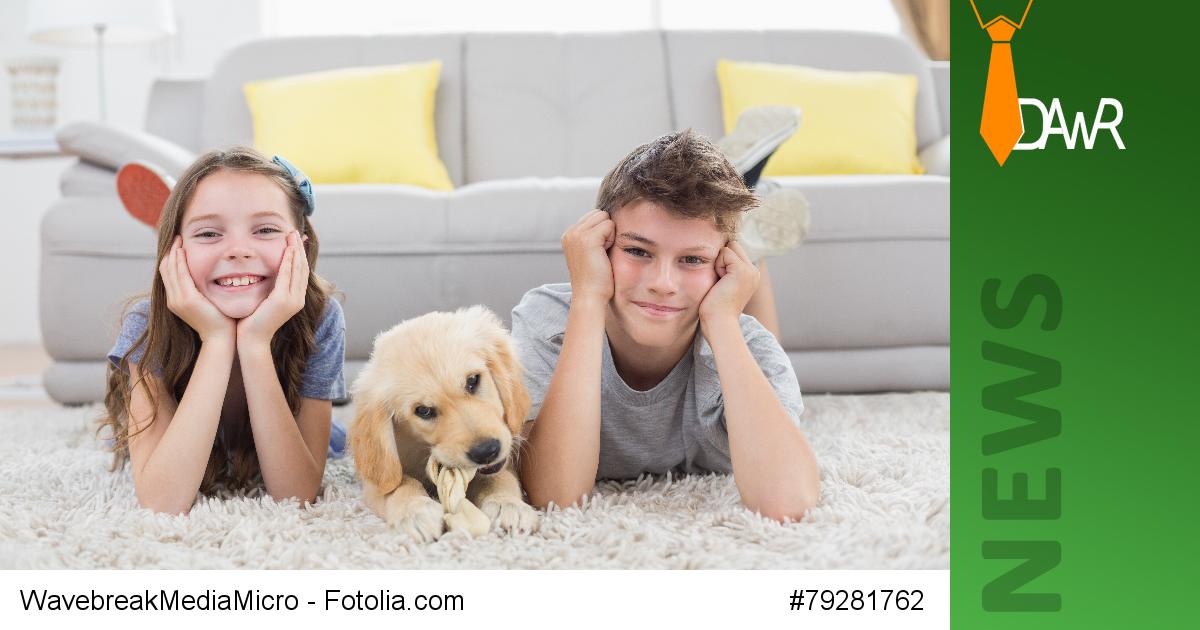 dawr vermieter d rfen das halten von hunden und katzen. Black Bedroom Furniture Sets. Home Design Ideas